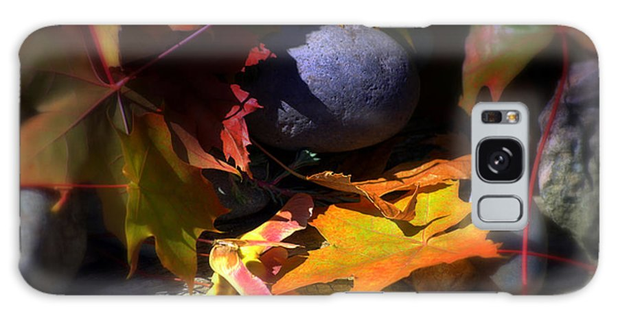 Leaves Galaxy Case featuring the photograph Seed by Larry Keahey
