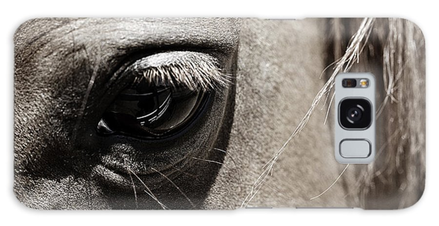 Americana Galaxy S8 Case featuring the photograph Stillness In The Eye Of A Horse by Marilyn Hunt
