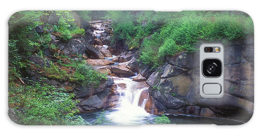New Hampshire Galaxy S8 Case featuring the photograph Sentinel Pine Bridge Flume Gorge by John Burk
