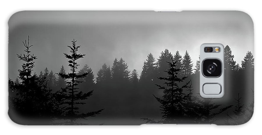 Nature Galaxy S8 Case featuring the photograph Sentinels In The Mist by Steven Ford