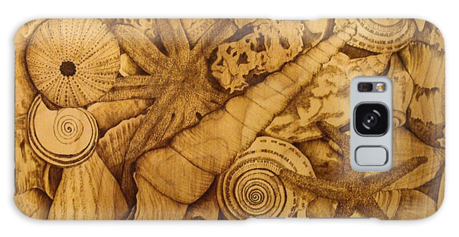 Pyrography; Sepia; Shells; Sea Shells; Starfish; Ocean; Sea; Underwater; Sea Life; Galaxy S8 Case featuring the pyrography Settled by Jo Schwartz