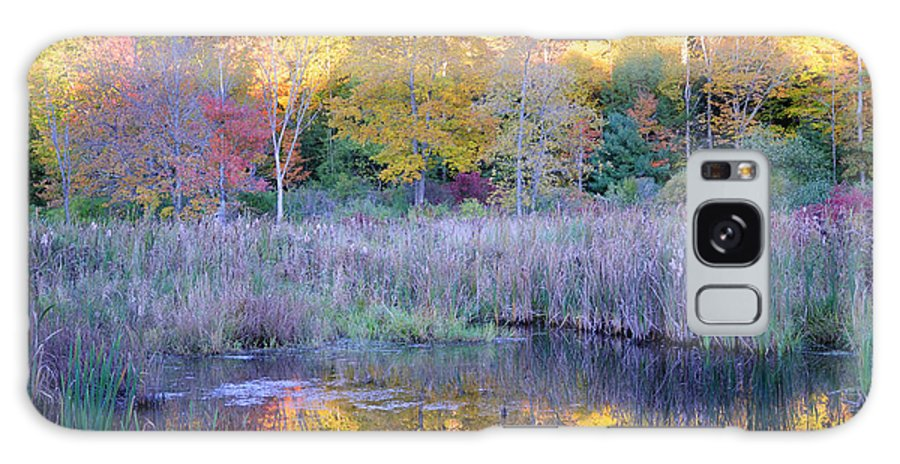 Fall Foliage Galaxy S8 Case featuring the photograph Shady Pond by Tom Heeter
