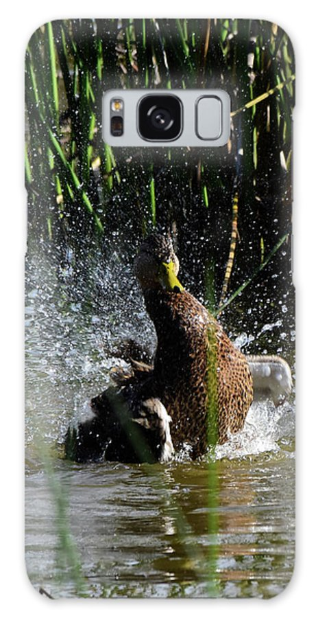 Duck Galaxy S8 Case featuring the photograph Shake It Off by Dwight Eddington