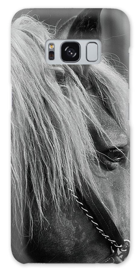 Horse Galaxy S8 Case featuring the photograph Shaker by Donna Shahan