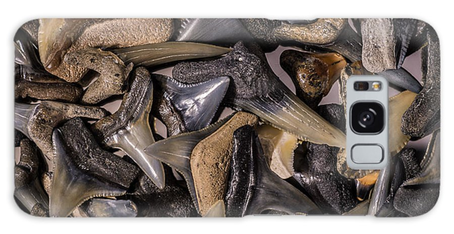 Sharks Teeth Galaxy S8 Case featuring the photograph Sharks Teeth 8 by Robbie Lyle