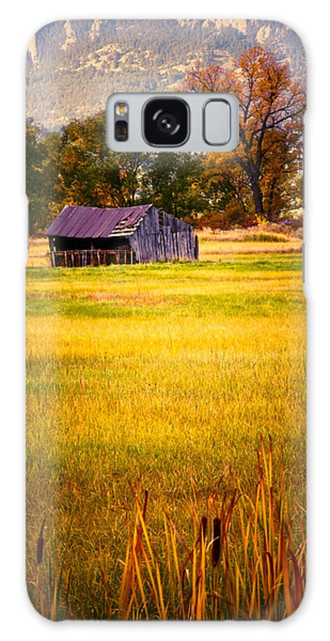 Shed Galaxy S8 Case featuring the photograph Shed In Sunlight by Marilyn Hunt