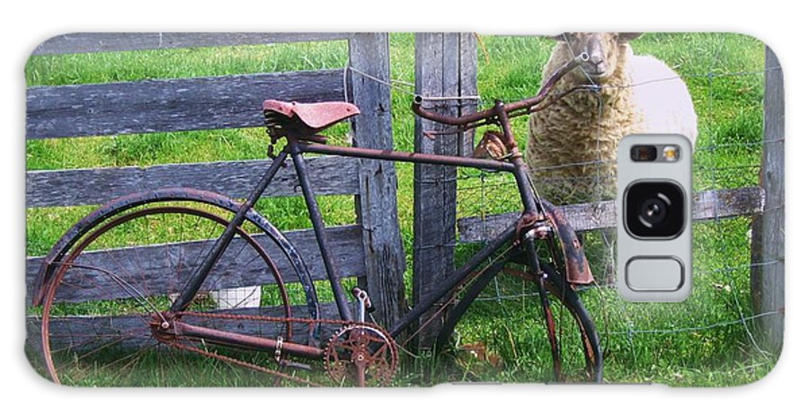 Photograph Sheep Bicycle Fence Grass Galaxy Case featuring the photograph Sheep And Bicycle by Seon-Jeong Kim