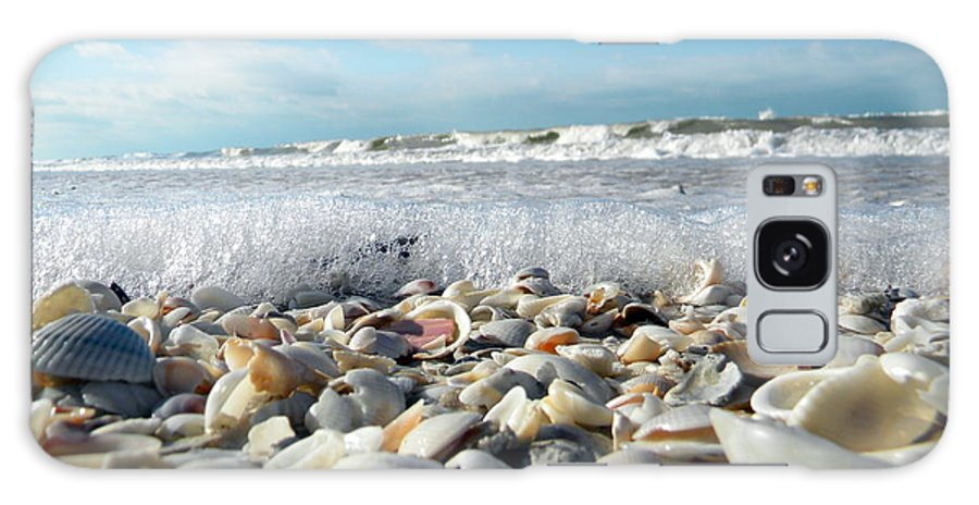 Galaxy S8 Case featuring the photograph Shells On The Beach by Sean Allen