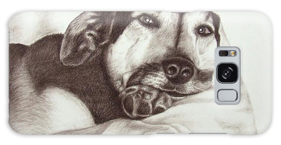 Dog Galaxy S8 Case featuring the drawing Shepherd Dog Frieda by Nicole Zeug
