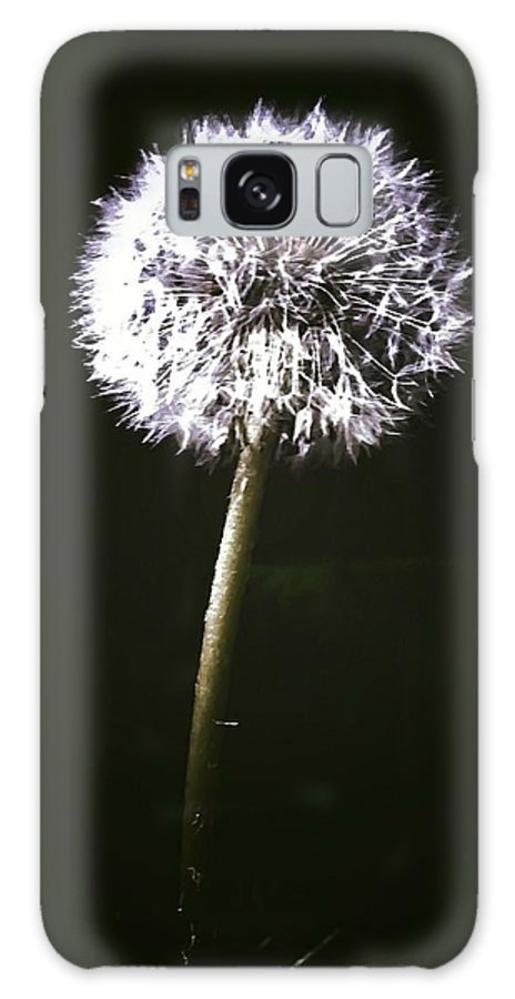 Galaxy S8 Case featuring the photograph Shhh by Lisa Anne Warren