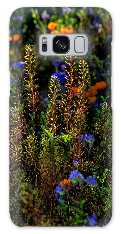 Flowers Galaxy Case featuring the photograph Shimmers by Randy Oberg