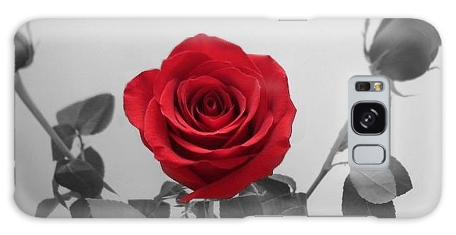 Roses Photography Galaxy S8 Case featuring the photograph Shining Red Rose by Georgeta Blanaru