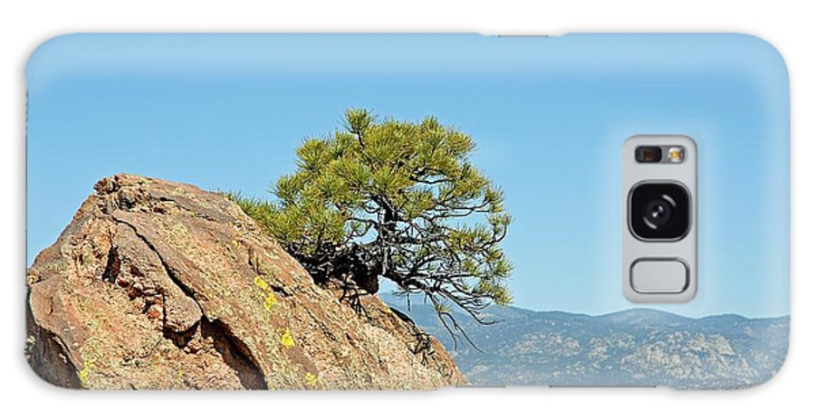 Shrub Galaxy S8 Case featuring the photograph Shrub And Rock At Canon City by Robert Meyers-Lussier