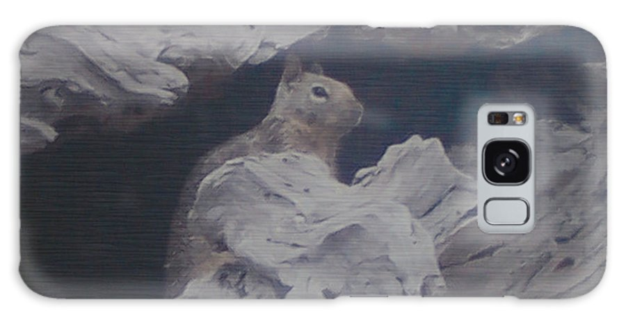 Squirrel Galaxy Case featuring the photograph Silent Observer by Pharris Art