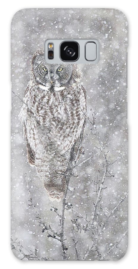 Owl Galaxy S8 Case featuring the photograph Silent Snowfall Portrait by Everet Regal