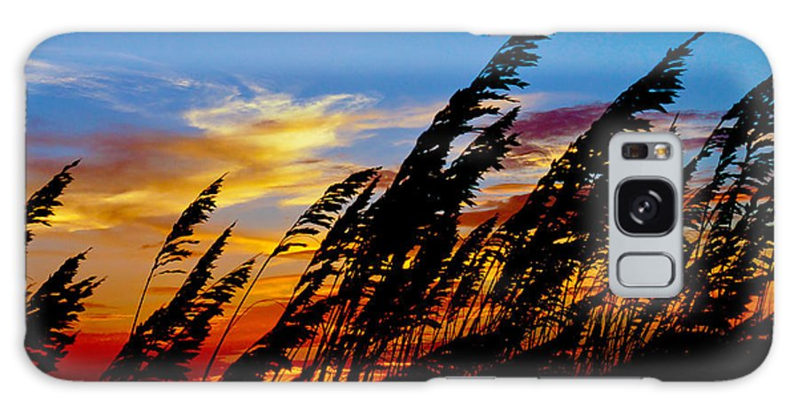 Silhouette Galaxy S8 Case featuring the photograph Silhouette Oats by Matthew Trudeau