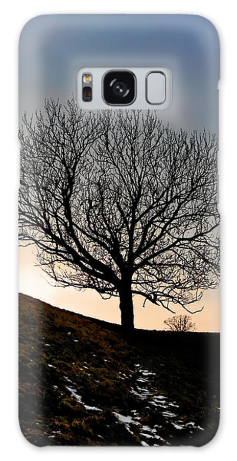 Tree Galaxy S8 Case featuring the photograph Silhouette Of A Tree On A Winter Day by Christine Till