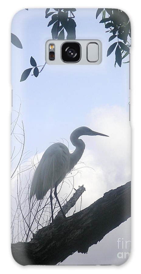 Nature Galaxy S8 Case featuring the photograph Silhouettes Against The Morning Sky by Lucyna A M Green