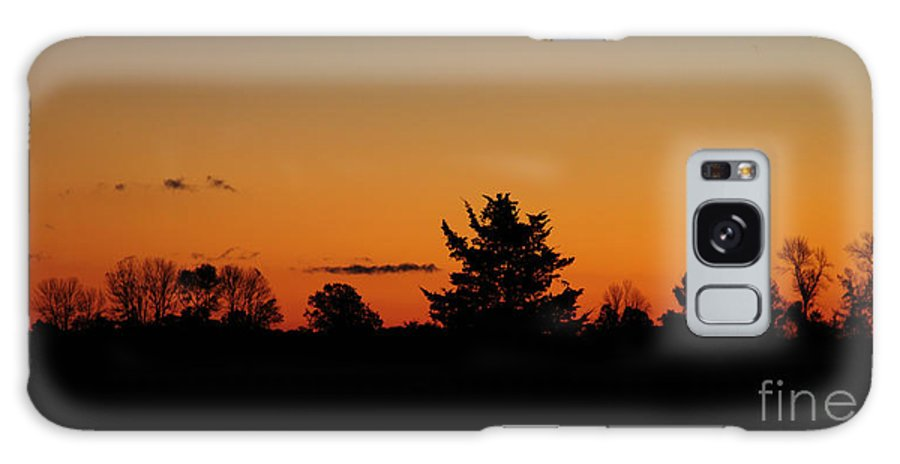 Nature Galaxy S8 Case featuring the photograph Silhouettes At Dawn by Joe Ng