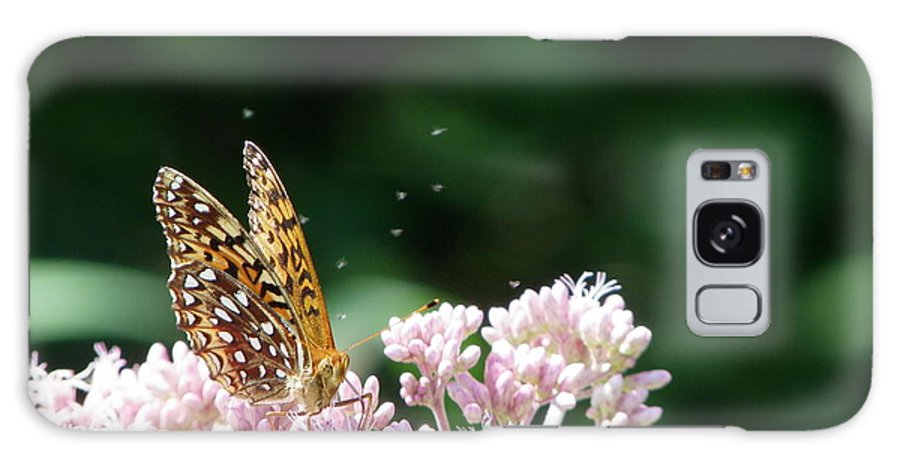 Butterfly Galaxy S8 Case featuring the photograph Sipping Nectar by Peggy King