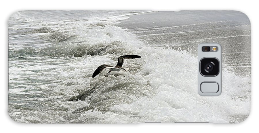 Black Skimmer Galaxy S8 Case featuring the photograph Skimmer And Waves by William Tasker