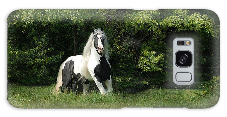Horse Artwork Galaxy S8 Case featuring the photograph Slainte by Fran J Scott