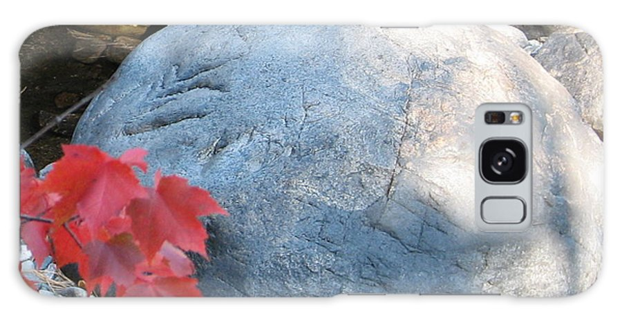 Stone Galaxy Case featuring the photograph Small Wonder by Kelly Mezzapelle