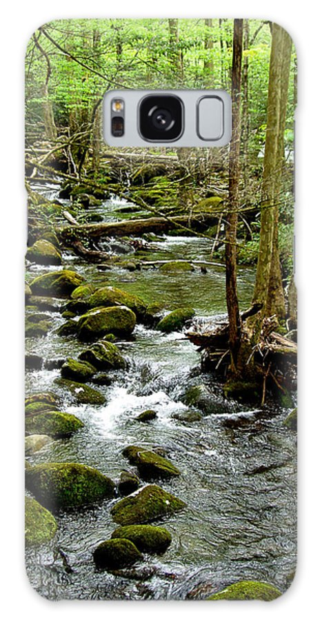 River Galaxy S8 Case featuring the photograph Smoky Mountain Stream 2 by Nancy Mueller