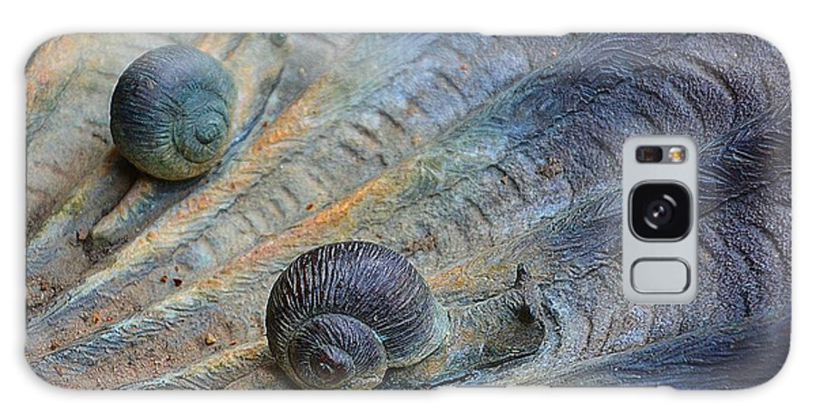 Sculpture Galaxy S8 Case featuring the photograph Snail's Pace by Cindy Manero