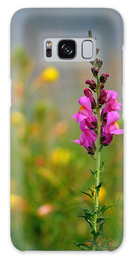 Flower Galaxy S8 Case featuring the photograph Snap Dragon by Lori Seaman