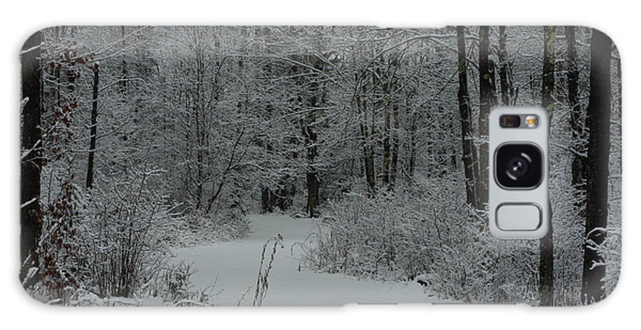 Snow Galaxy S8 Case featuring the photograph Snow Covered Path Into The Woods by Alice Markham
