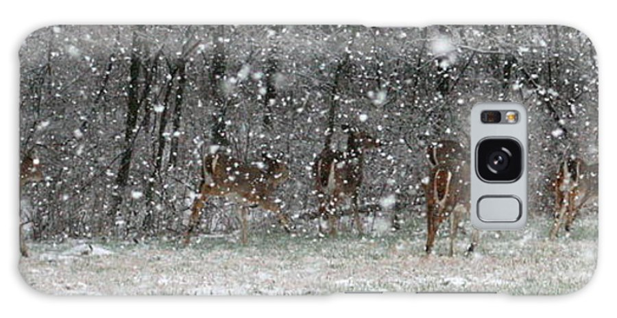 Landscape Galaxy S8 Case featuring the photograph Snow Deer by David Dunham