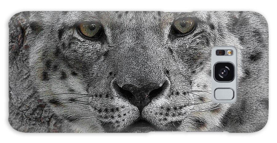 Animals Galaxy S8 Case featuring the photograph Snow Leopard 5 Posterized by Ernie Echols