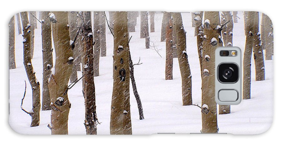 Aspen Galaxy S8 Case featuring the photograph Snowy Aspen by Carol Milisen