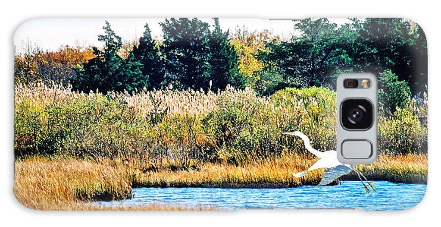 Landscape Galaxy S8 Case featuring the photograph Snowy Egret-island Beach State Park N.j. by Steve Karol