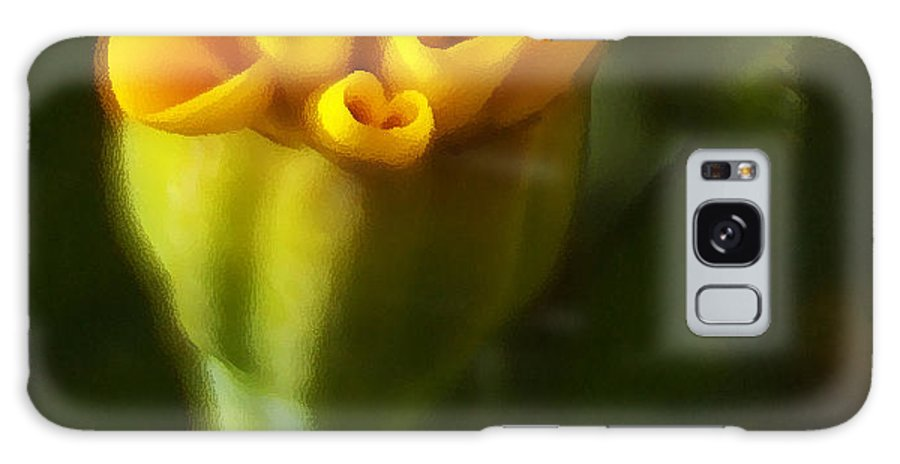 Yellow Galaxy S8 Case featuring the photograph So Much More by Linda Shafer