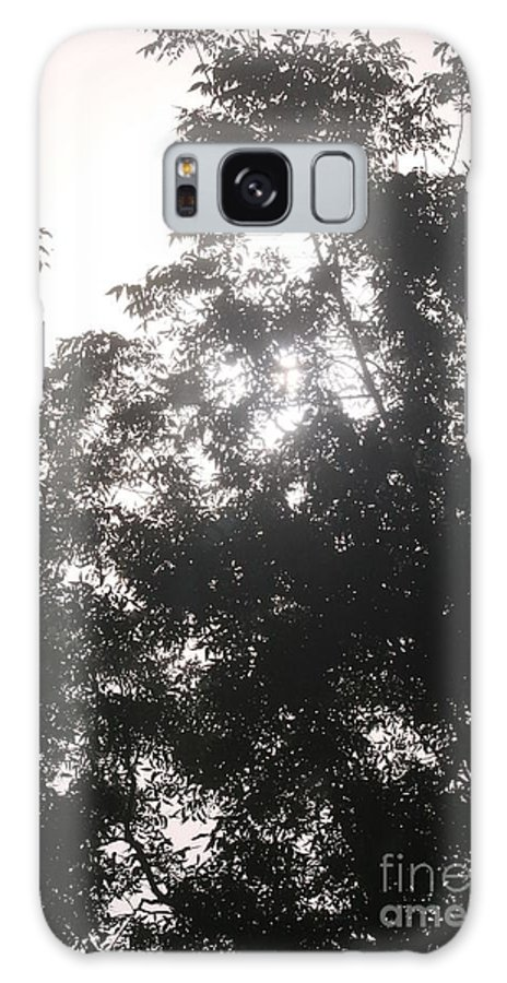 Light Galaxy S8 Case featuring the photograph Soft Light by Nadine Rippelmeyer