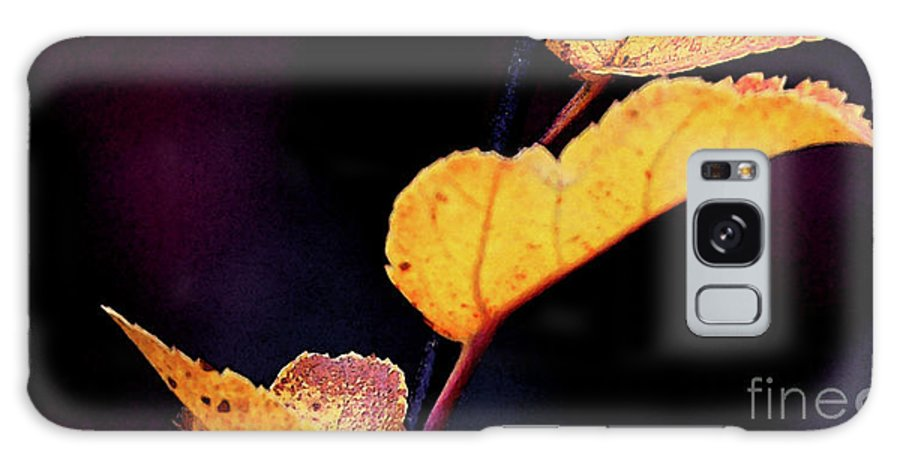 Leaves Galaxy S8 Case featuring the photograph Souls Approach by Linda Shafer
