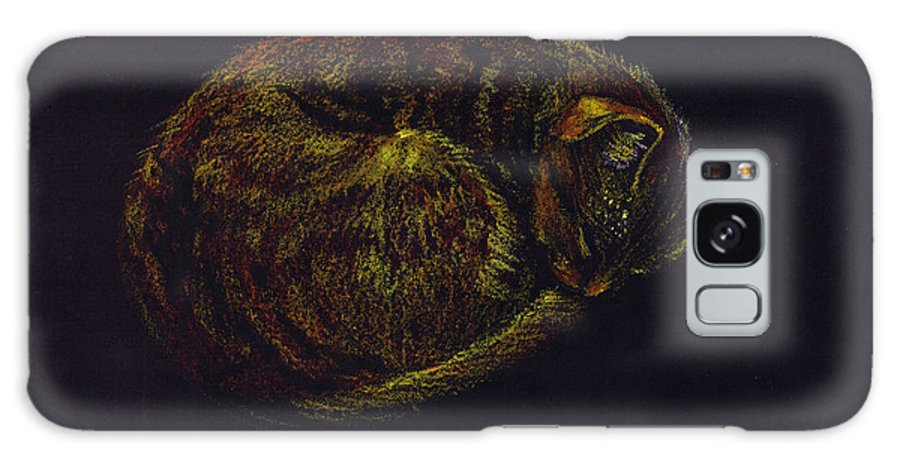 A Cat Soundly Asleep-oil Pastel Galaxy Case featuring the painting Sound Asleep II by Mui-Joo Wee