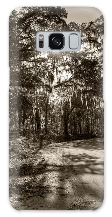 Live Oak Galaxy S8 Case featuring the photograph Southern Oak Shadows by Dustin K Ryan