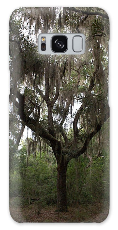 Galaxy S8 Case featuring the photograph Southern Style by Debbie May