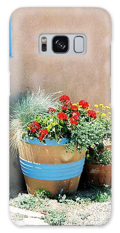 Flowers Galaxy S8 Case featuring the photograph Southwestern Planting by Diana Davenport