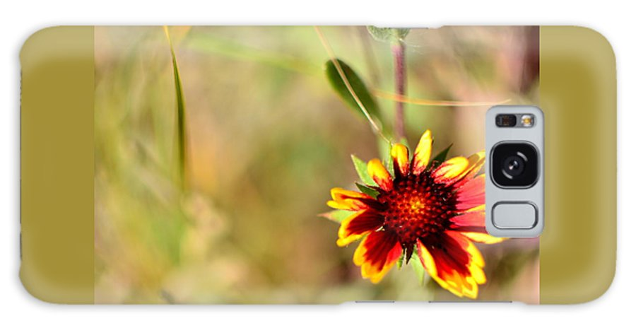Flower Galaxy S8 Case featuring the photograph Spark by Rachel Dyson Hrpcek