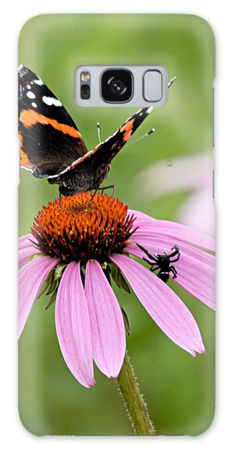 Photography Galaxy S8 Case featuring the photograph Spider And Butterfly On Cone Flower by Larry Ricker