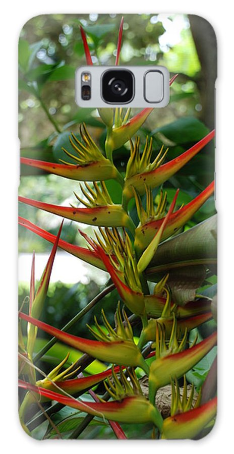 Spike Galaxy S8 Case featuring the photograph Spike Plants by Rob Hans