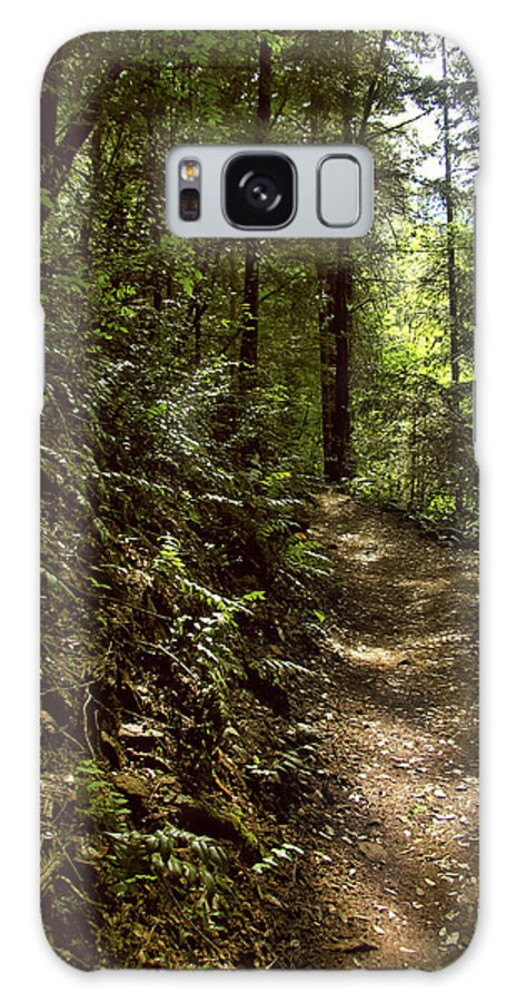 Landscape Galaxy S8 Case featuring the photograph Spirit Of The Wood by Karen W Meyer