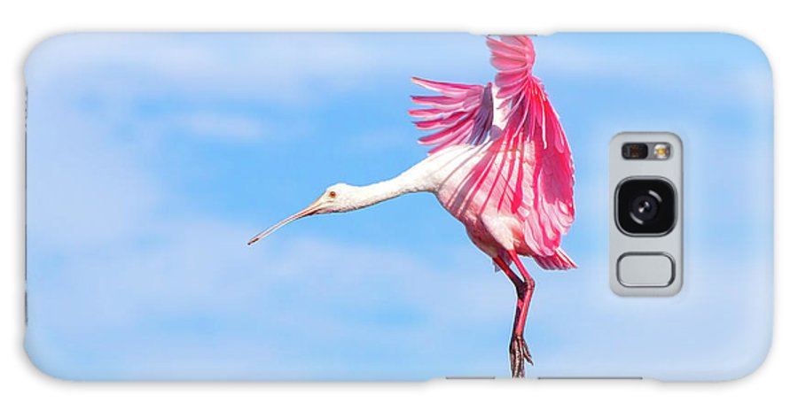 Roseate Spoonbill Galaxy S8 Case featuring the photograph Spoonbill Ballet by Mark Andrew Thomas