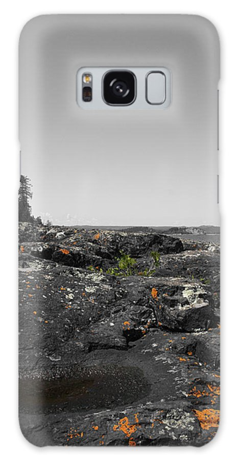 Landscape Galaxy S8 Case featuring the photograph Spotted Rocks by Dylan Punke