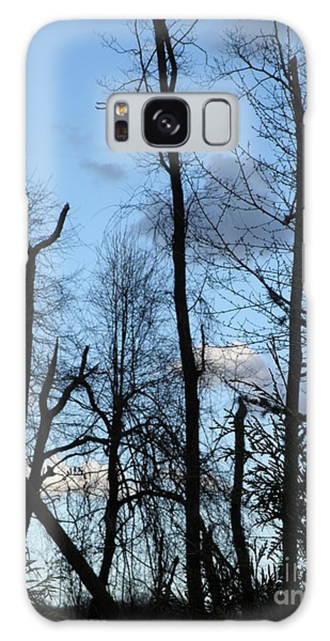 Trees Galaxy Case featuring the photograph Spring 09 Tree Skyline by M Brandl