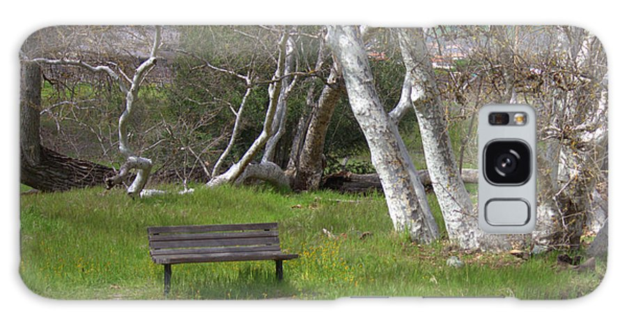 Bench Galaxy S8 Case featuring the photograph Spring Bench In Sycamore Grove Park by Carol Groenen